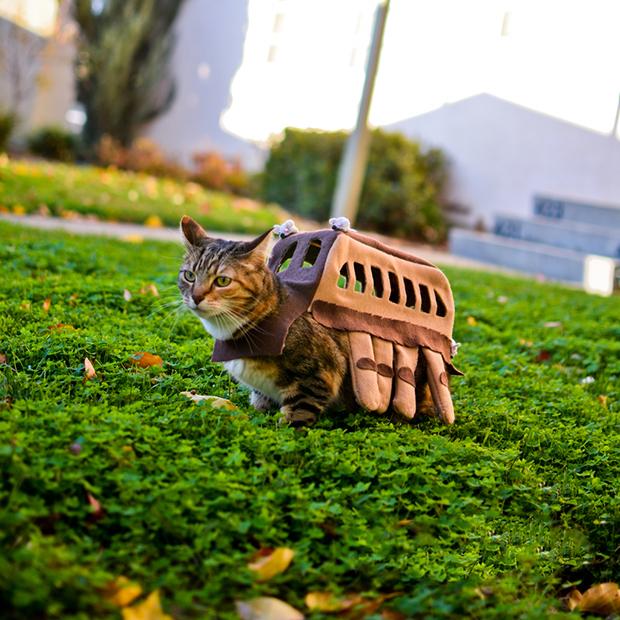 """""""Nekobasu"""", el """"Gato Bus"""" de Totoro…Visto en un jardín!!"""